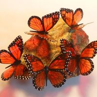 Stephanie Sullivan recycled plastic bottle butterflies